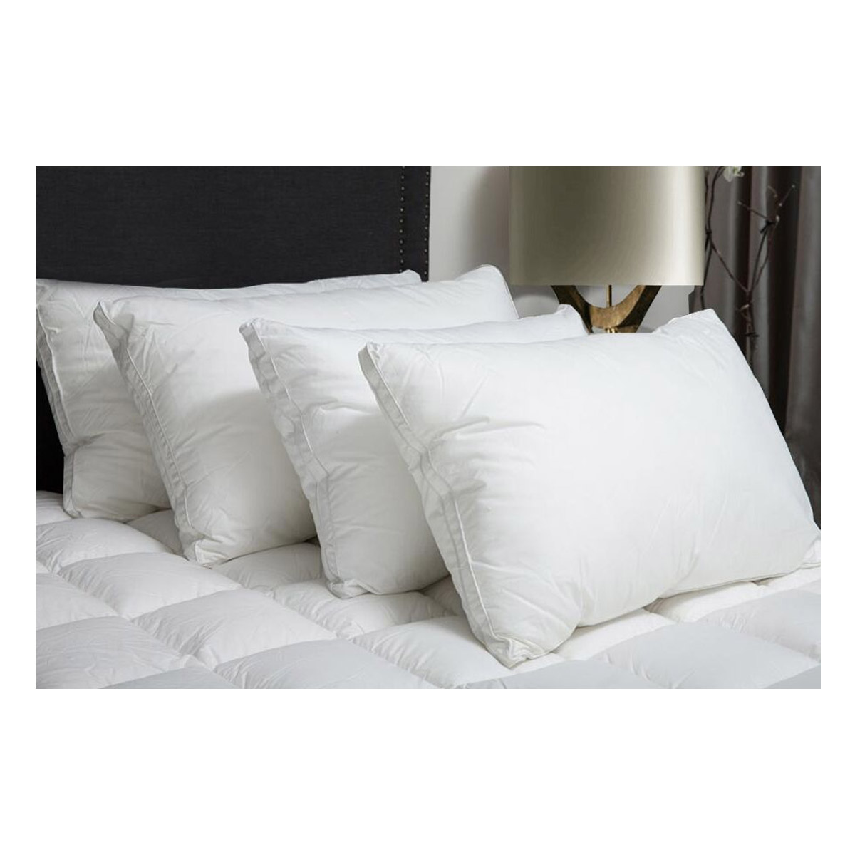 Signature Microfibre Hotel King Pillow